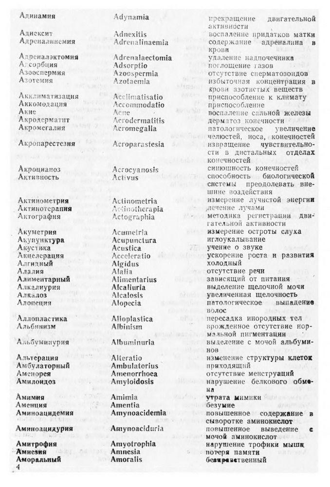 chlen-bolshuyu-popu