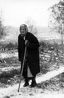 Images of the Eastern Front / Образы восточного фронта (Фотоальбом)[2008, PDF]